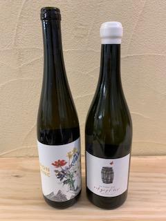オーストリア、ワインの実験室!!の画像